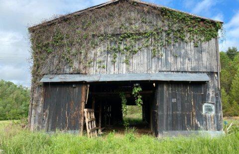 Cook Branch Farms