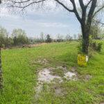 Anderson Farms